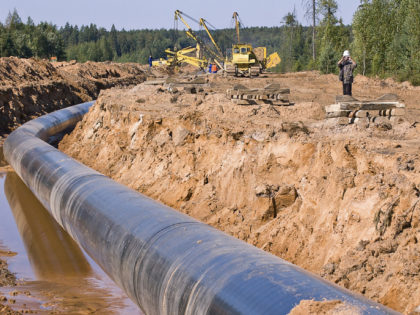 Pipelines subjected to ground-induced deformations